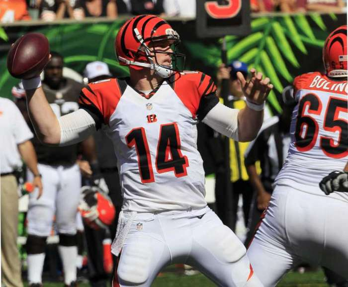 Playoffs, Sleepers, Andy Dalton